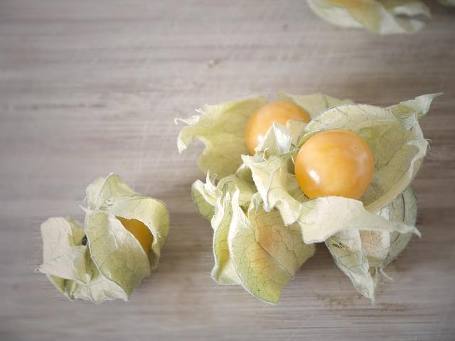 physalis alchechengi frutta esotica