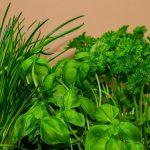 Erbe aromatiche: proprietà e utilizzi in cucina