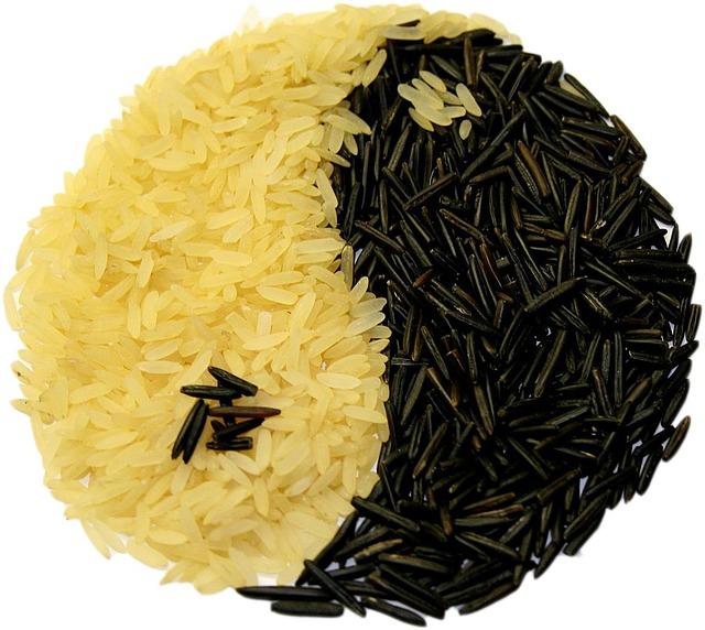 macrobiotica yin yang