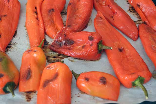 peperoni sottolio